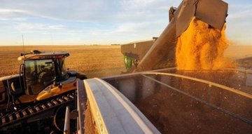 GRAIN HIGHLIGHTS : Top Stories of the Day