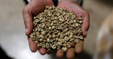 Vietnam November coffee exports down 37.5% year on year, rice up 6.8%
