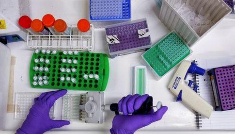 veritas pharma aktie