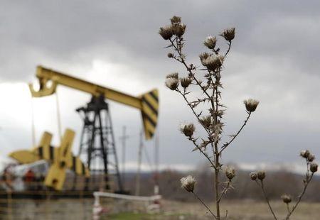 Plants are pictured near an oil pump, owned by oil company Rosneft, in Krasnodar region