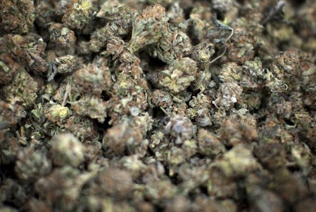 Marijuana is pictured for sale during the annual 4/20 day, which promotes the use of marijuana,  in Vancouver