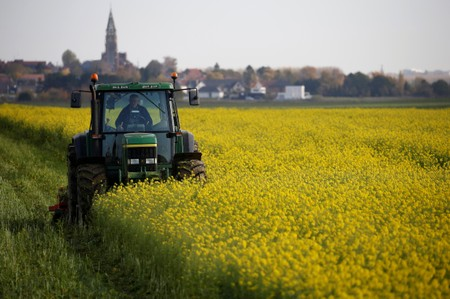 A French farmer drives his tractor as he mows mustard plants in his field in Bourlon