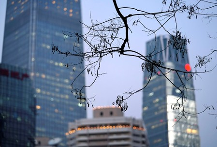 Branches are pictured in front of buildings in Beijing's central business area
