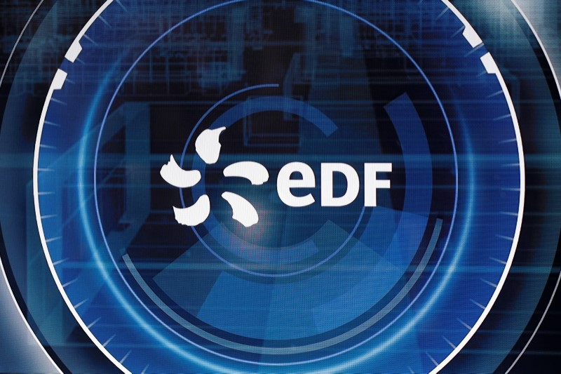 The logo of Electricite de France SA (EDF) is pictured at the World Nuclear Exhibition (WNE), the trade fair event for the global nuclear community in Villepinte