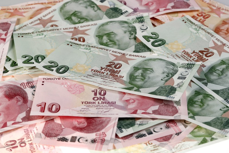 FILE PHOTO: Turkish Lira banknotes are seen in this picture illustration