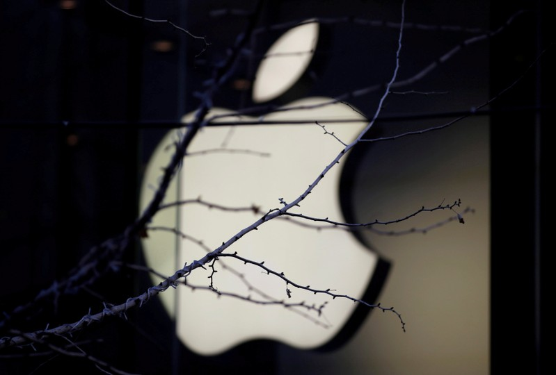 FILE PHOTO: An Apple company logo is seen behind tree branches outside an Apple store in Beijing