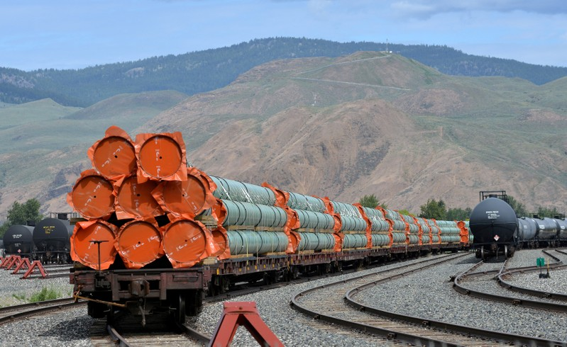 Kinder Morgan : Some U S  metals importers resigned to