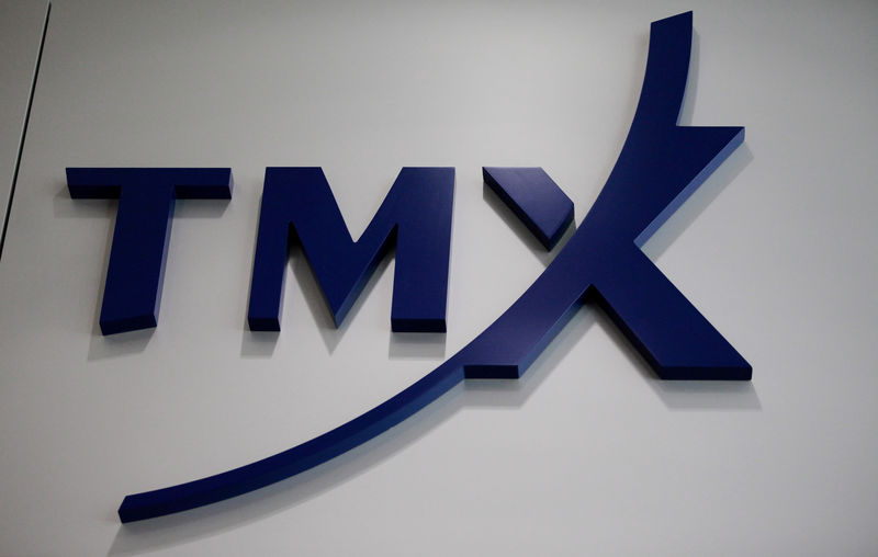 FILE PHOTO -  A logo for TMX Group, which operates the Toronto Stock Exchange in Toronto