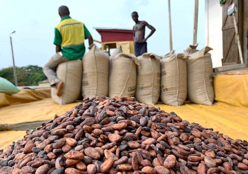 FILE PHOTO: Cocoa beans are pictured next to a warehouse at the village of Atroni, near Sunyani