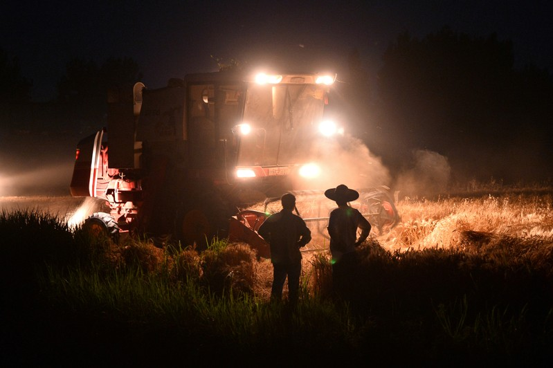 Combine harvester works on a wheat field at a village in Taierzhuang