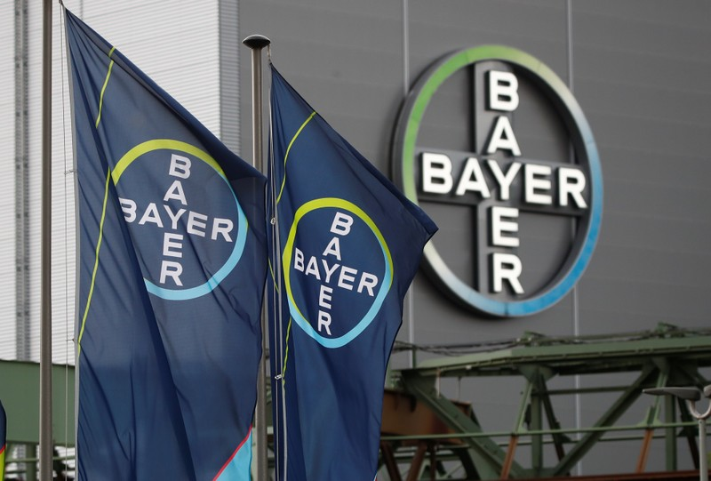 Logo and flags of Bayer AG are pictured outside a plant of the German pharmaceutical and chemical maker in Wuppertal