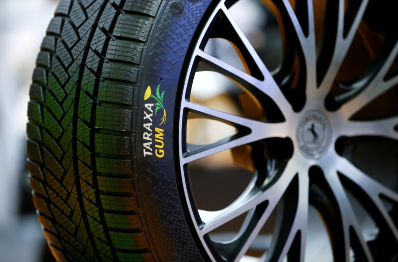 FILE PHOTO: An alternative Continental winter tyre made of dandelion rubber is pictured in Hanover