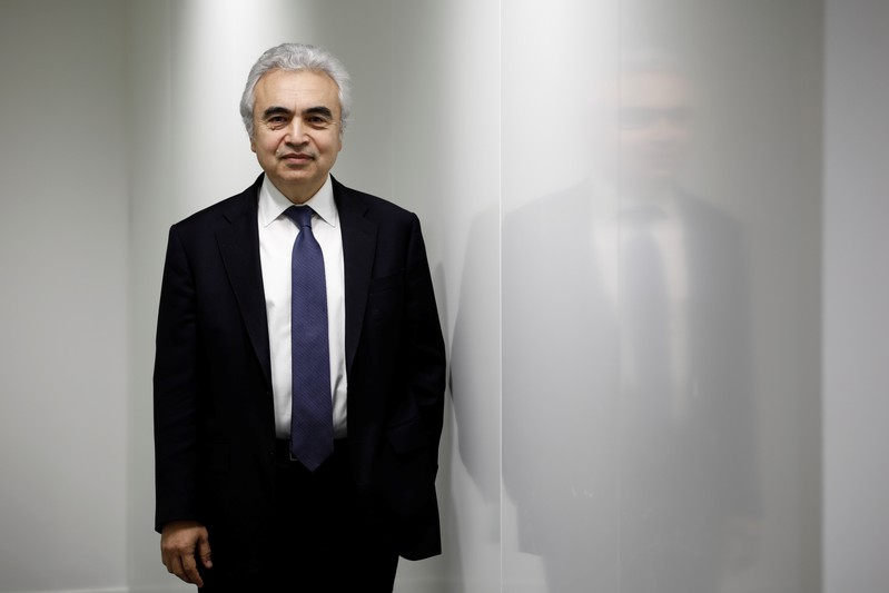 FILE PHOTO: Fatih Birol, Executive Director of the International Energy Agency poses for a portrait at their offices in Paris