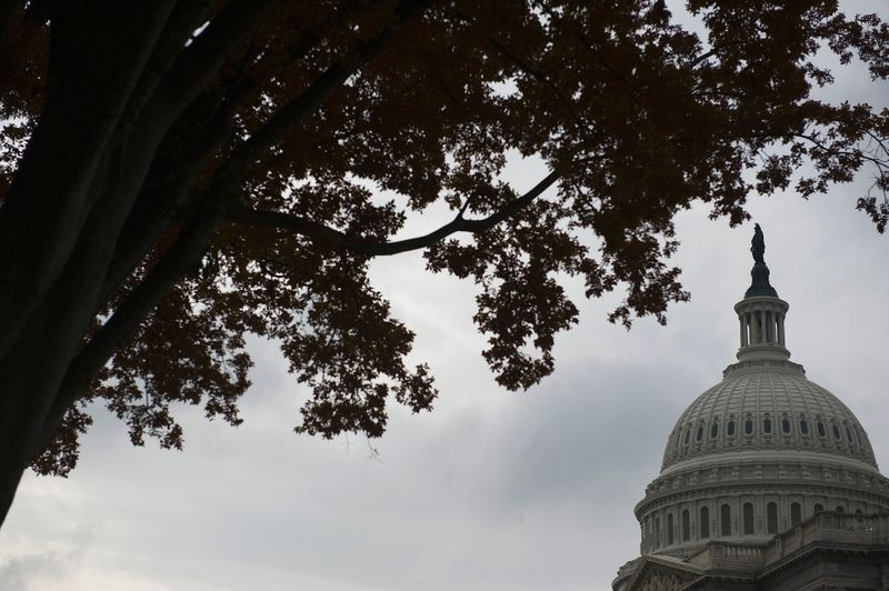 FILE PHOTO:  A view of the U.S. Capitol dome in Washington