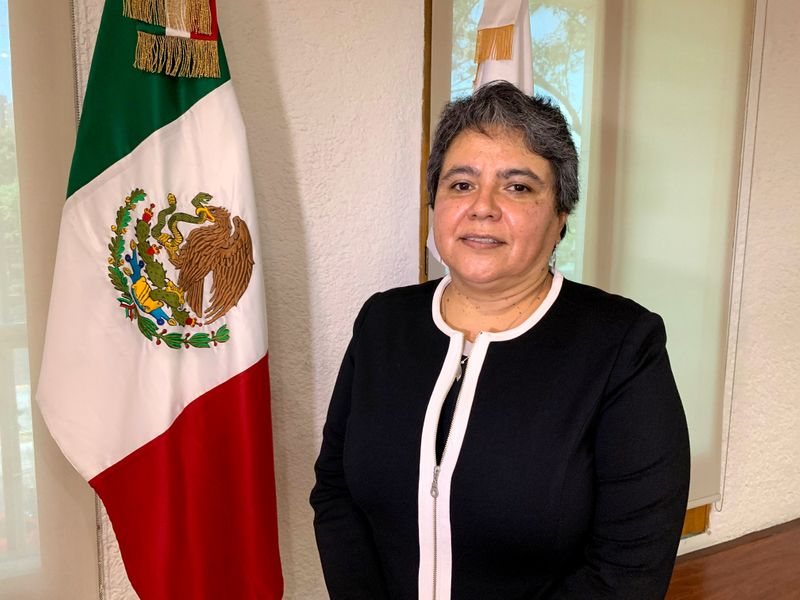 Head of Mexico's Tax Administration Service (SAT) Raquel Buenrostro poses for a picture during an interview with Reuters, in Mexico City