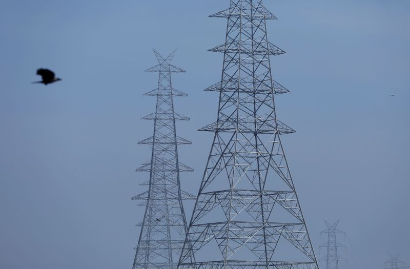 A bird flies next to electricity pylons in the old quarters of Delhi