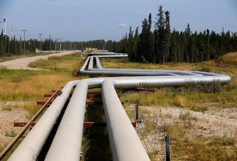 Pipelines carrying steam to well heads and heavy oil back to the processing plant line the roads at the Cenovus Energy Christina Lake SAGD project south of Fort McMurray