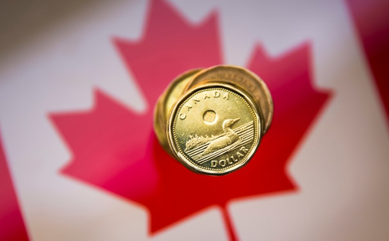 A Canadian dollar coin, commonly known as the