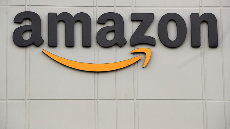 Germany's Amazon workers on